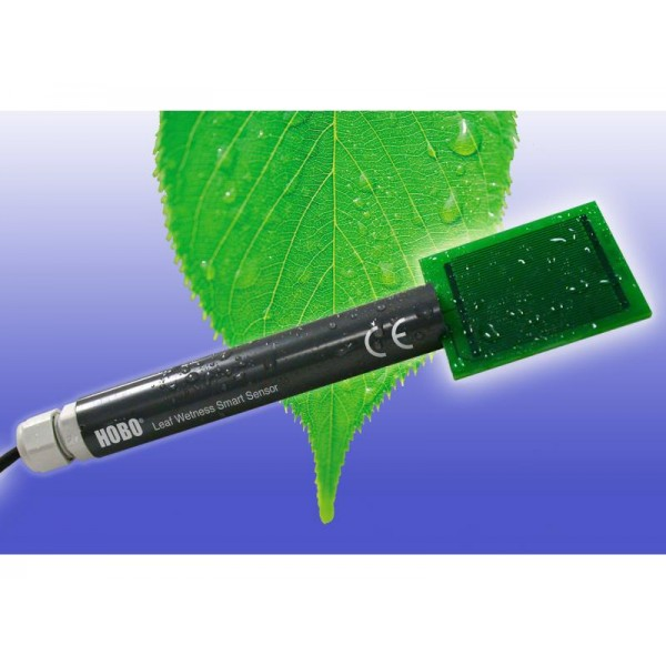 Leaf Wetness (1)